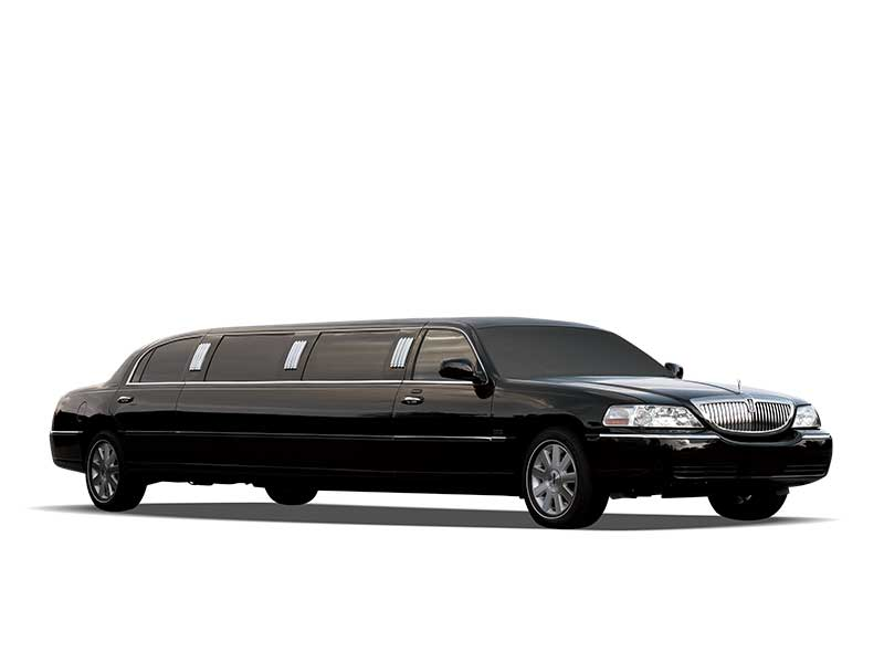 Thoroughbred Limousine